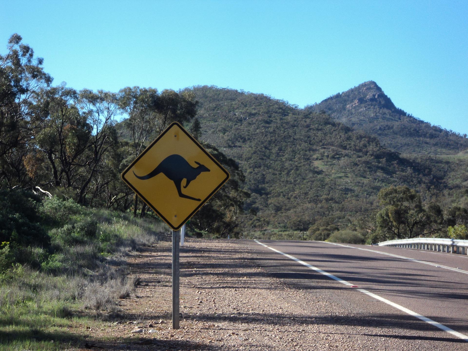 droda w Australii